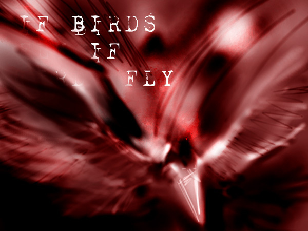 IF BIRDS FLY